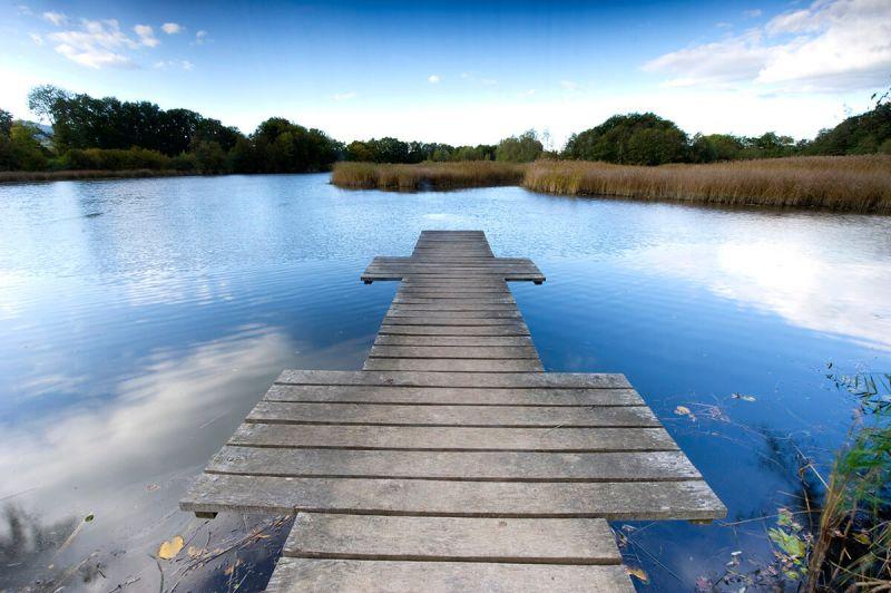 Dimanche 9 février : sortie-nature aux étangs de Cosagny !